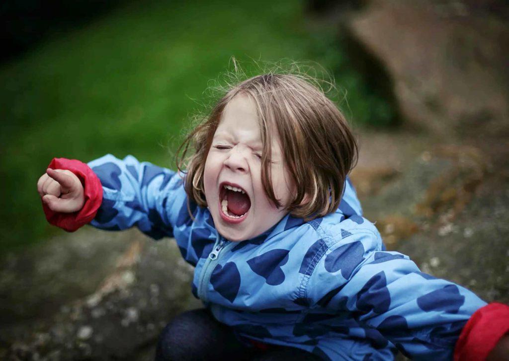 Детские истерики. Инструкция по выживанию для родителей тоддлеров